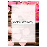 Дипломная бумага А4 Wellness, 170 г/м² (25 шт.)