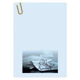 Фоновая бумага А4 Business, 100 г/м² (50 шт.)